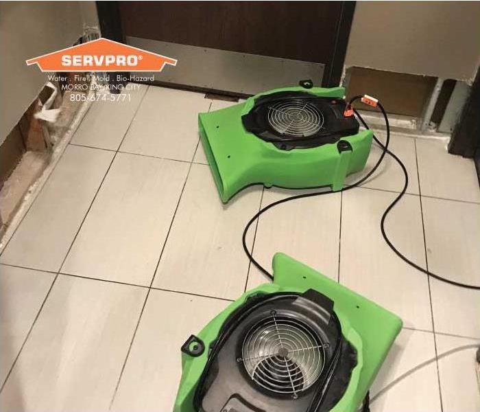 a picture of green floor fans in a bathroom