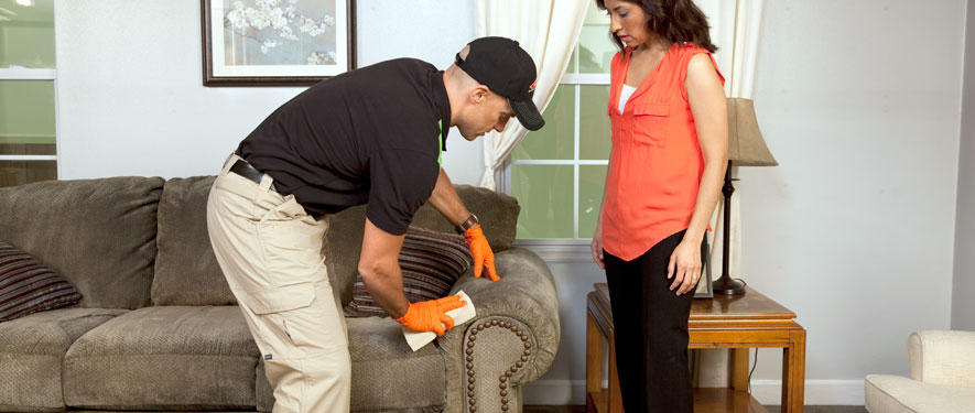 Morro Bay, CA carpet upholstery cleaning